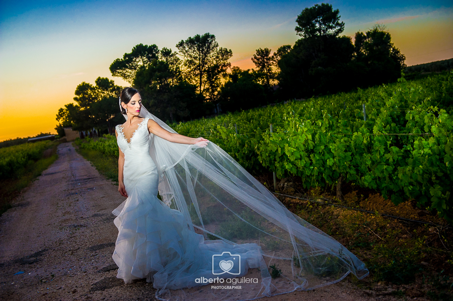 atardecer en una viña, boda puente genil